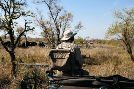 tracker in bush on safari buffalo