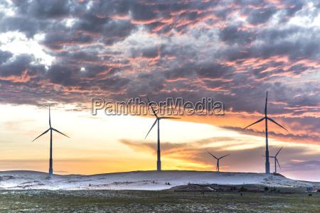 wind turbines at sunset taiba ceara