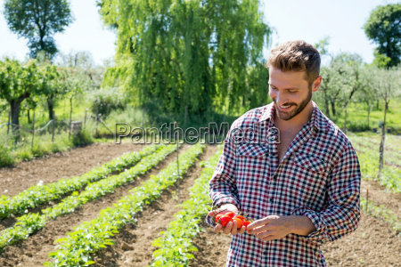 young man in vegetable garden holding