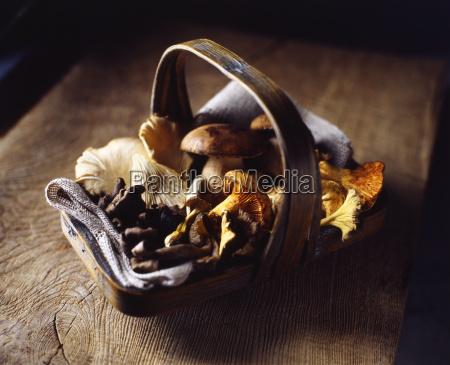 organic wild mushrooms in basket on