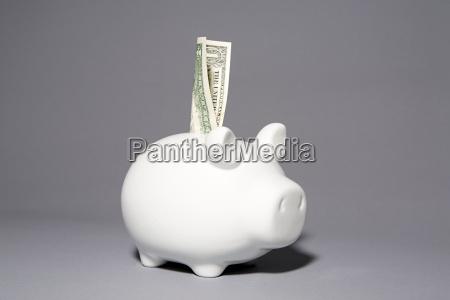 piggybank with a dollar note