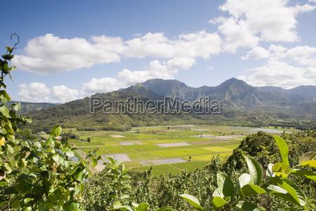 hanalei valley in kauai