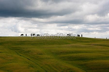 rural landscape of val dorcia italy
