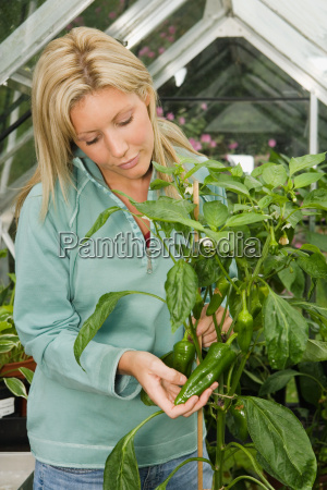 woman holding fresh green peppers