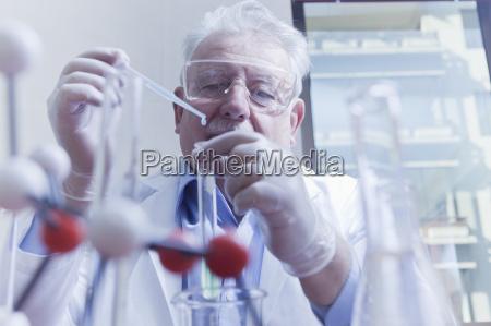 senior scientist working at laboratory