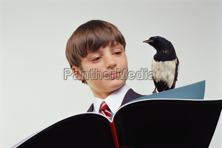 boy reading a book with magpie