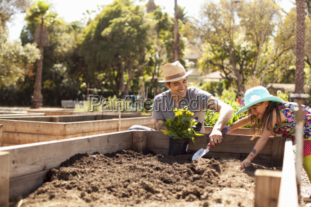 mid adult man and daughter digging