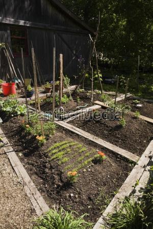 organic flower and vegetable garden plots