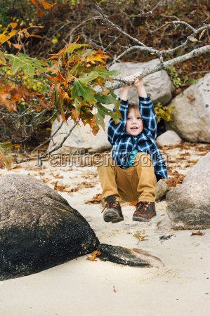 young boy swinging on tree branch