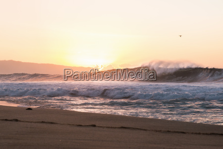 seascape with rolling waves at sunset