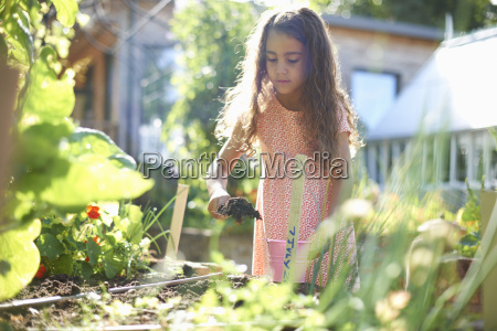 girl digging raised plant bed in