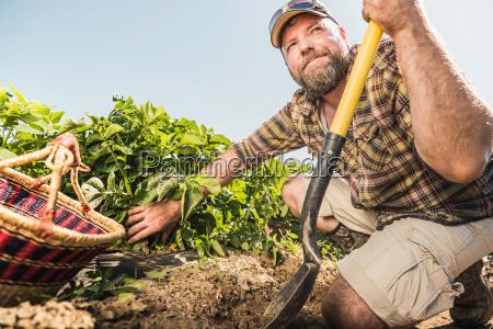 bearded man holding spade kneeling in