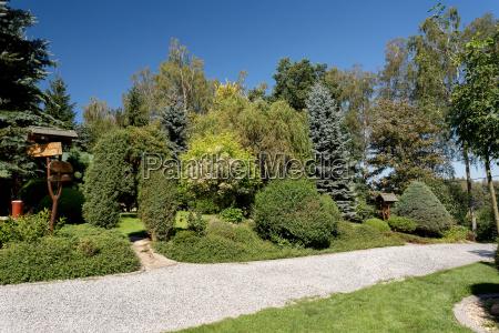 beautiful summer garden design