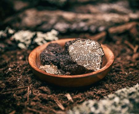 black truffle mushroom