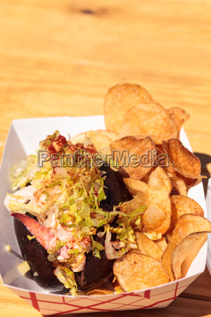 gourmet maine lobster roll on a
