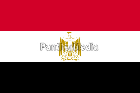 flag of egypt in correct proportions