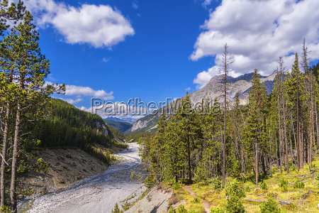 swiss national park wild valley at