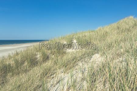 dunes with beach against blue sky