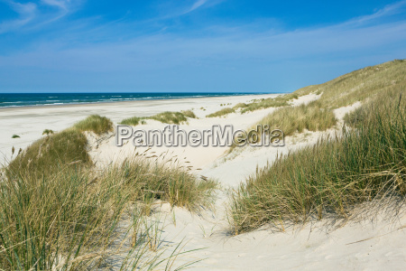wide dunes on the beach in
