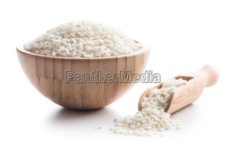 the arborio rice