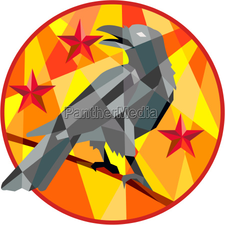 crow perch stars circle low polygon