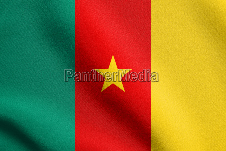 flag of cameroon waving with fabric