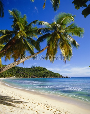 playa de anse takamakamahe islandseychelles