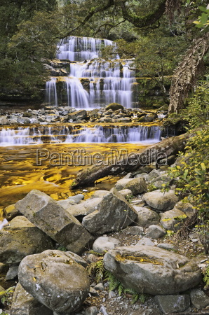liffey falls unesco world heritage site