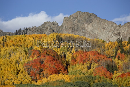 the dyke with fall colors grand