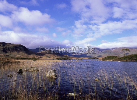 lochan na h achlaise a dystrophic