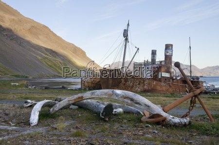 old whaling station grytviken south georgia