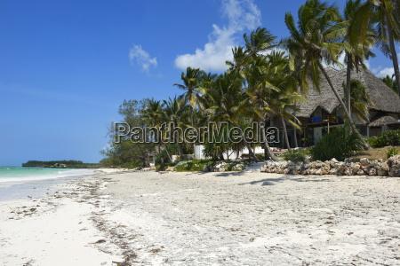 bwejuu beach zanzibar tanzania east africa