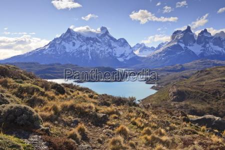 grasses lago pehoe and the cordillera