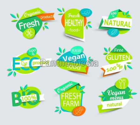 vector set of healthy organic food