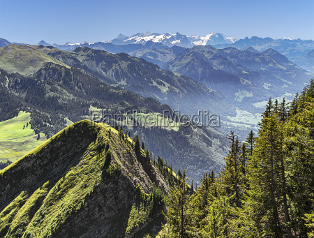 panorama from the stanserhorn