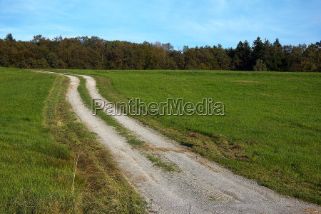 gravel road in a rural area