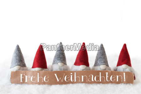 gnomes white background frohe weihnachten means