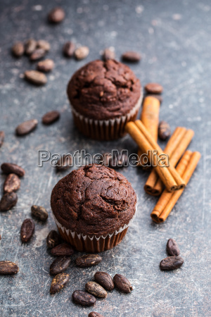 the tasty chocolate muffins and cocoa