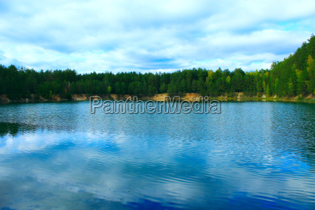 beautiful lake in the forest