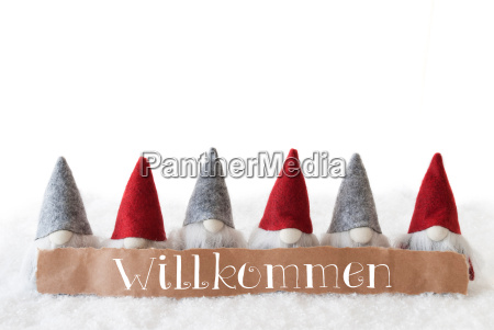 gnomes, , white, background, , willkommen, means, welcome - 19122131