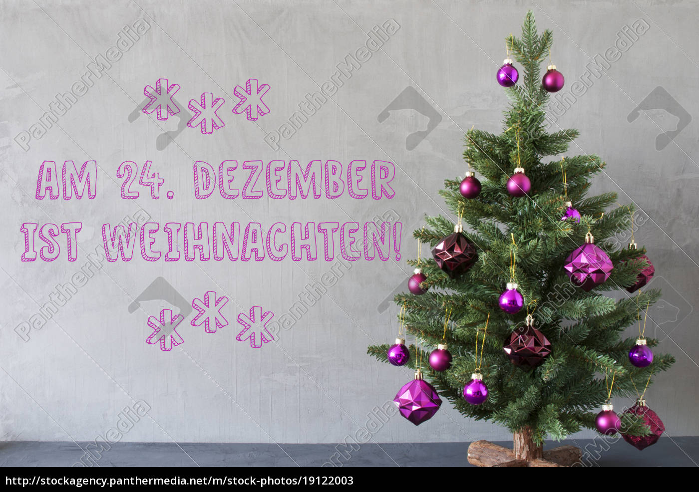 tree, , cement, wall, , weihnachten, means, christmas - 19122003