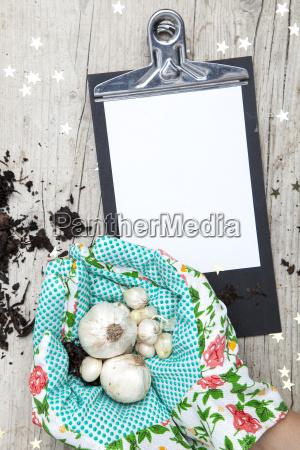 creative, christmas, card, for, a, garden - 19161027