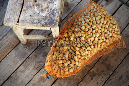 hazelnuts in the sack