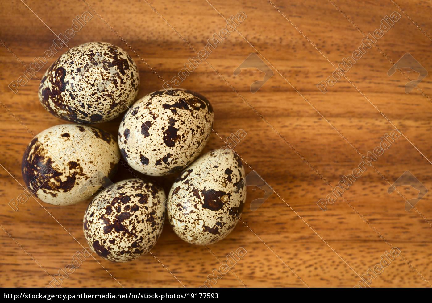 raw, quail, eggs - 19177593