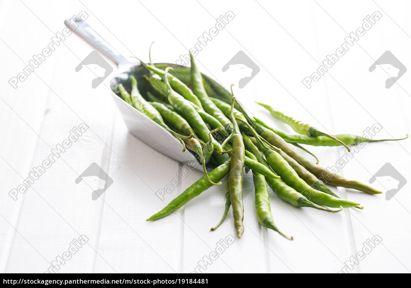 green, chili, peppers. - 19184481