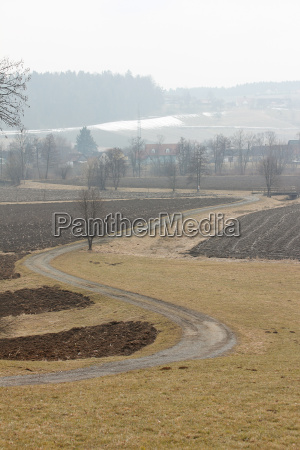 winding road between agricultural fields in