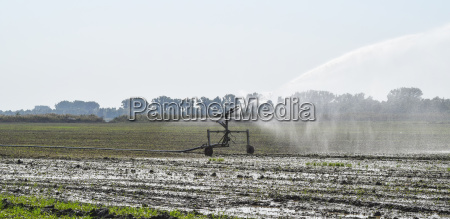 irrigation system in the field of