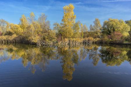 switzerland autumn colours autumnal atmosphere fall