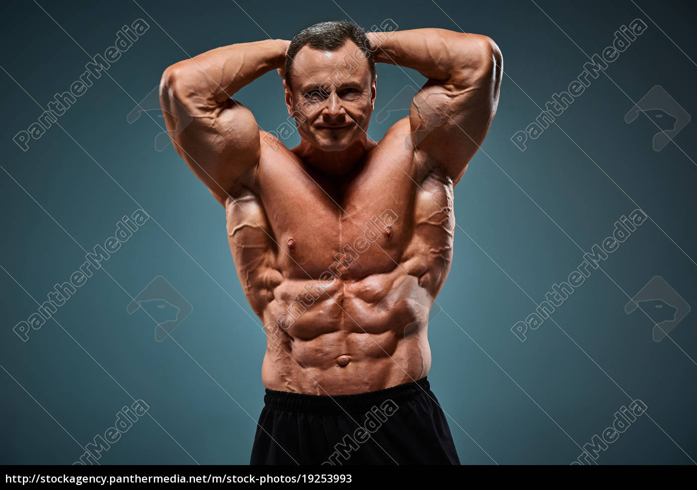 torso, of, attractive, male, body, builder - 19253993