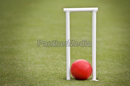 childs cricket wickets and cricket ball